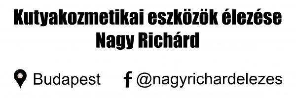nagy_richard